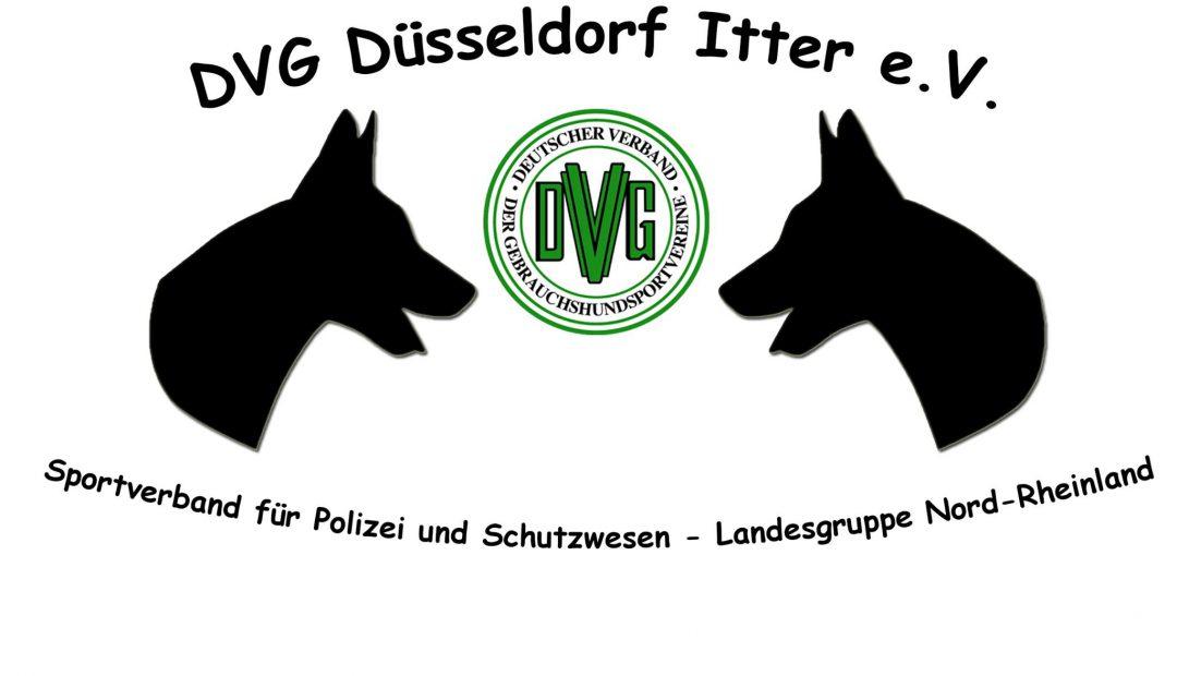 DVG-Itter-Logo